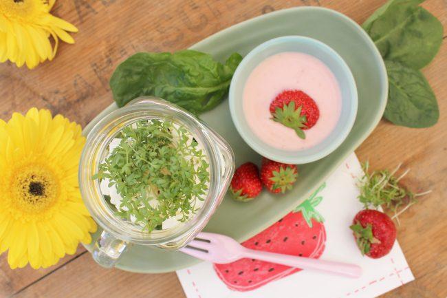 Shaking Salad von oben