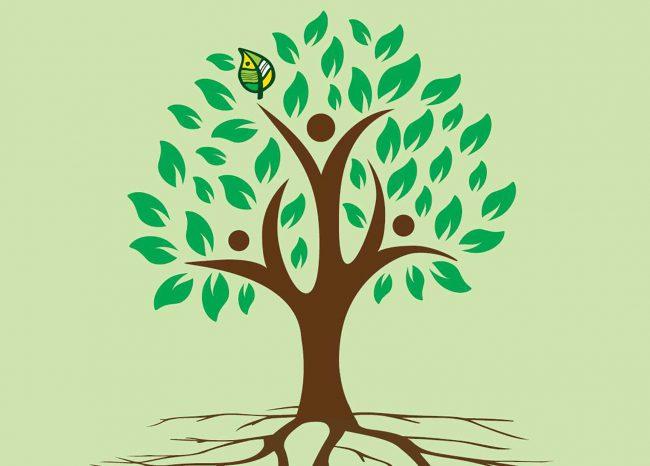 Baum der Dialog Tagung in St. Wolfgang