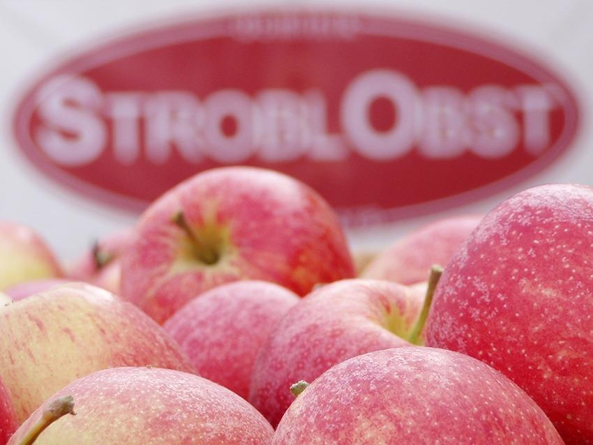 Äpfel Stroblobst