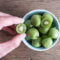 cropped hand picking hardy kiwi fruit or kiwi berry Actinidia Arguta from ceramic bowl on wooden kitchen table